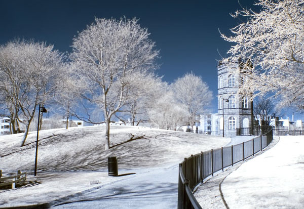 infrared photography examples
