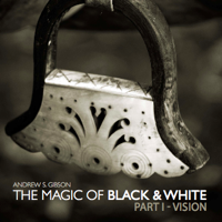 Quick Review: The Magic of Black and White eBook