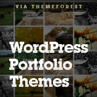 20 WordPress Portfolio Themes for Photographers