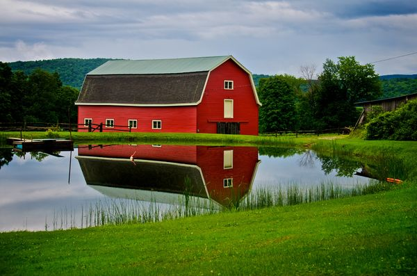 reflection photography examples