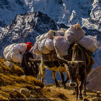 A Photographer's Guide to Visiting Nepal