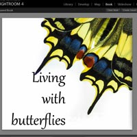 Books in Lightroom 4: Shortcuts and Pitfalls